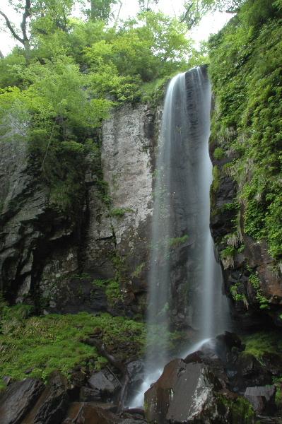 逆水の滝 全景