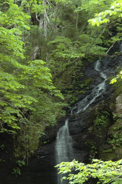 一の滝・・・ちょっと木陰で見えにくかった_(_^_)_