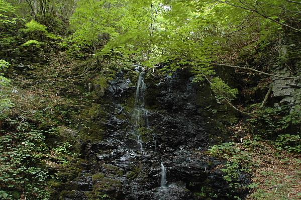 三の滝・・・水なく残念、でも新緑が美しいでしょう