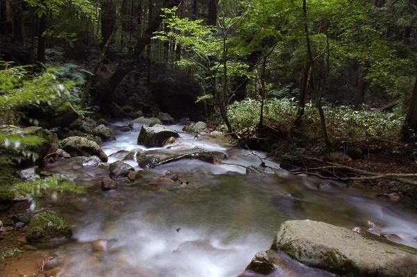 滝下の渓谷