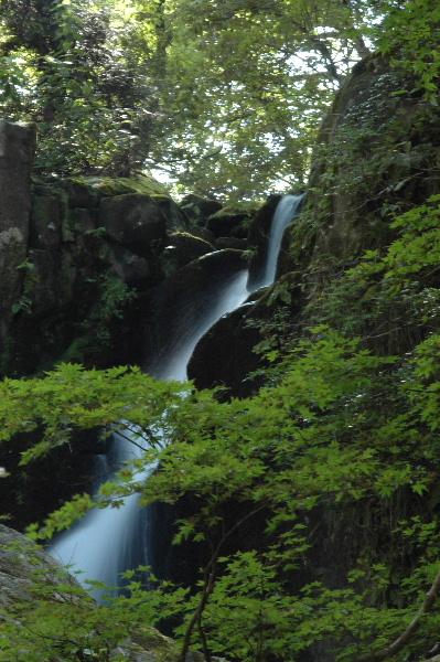 二つ滝 左手の滝の一番上、色づいたら綺麗でしょうね