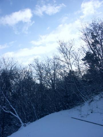 2008 2.13 こころ雪(会社) 008