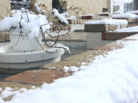 2008 2.13 こころ雪(会社) 014