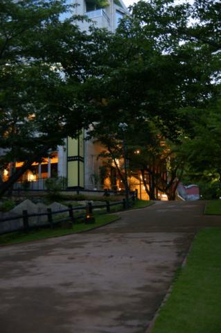 2008 6.22 ホタル撮影 美術館 046