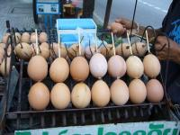 ご覧の通り、卵の串焼き