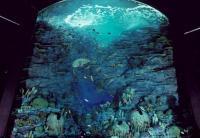 これで何がわかるンや!ですよね・・・何か海・・・・みたいな・・・・