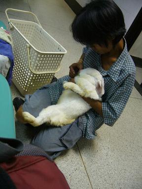 私の前の患者さん、このウサギさんは片足がなく、目が見えませんでした