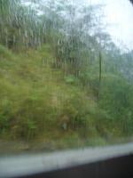 そして・・・雨、