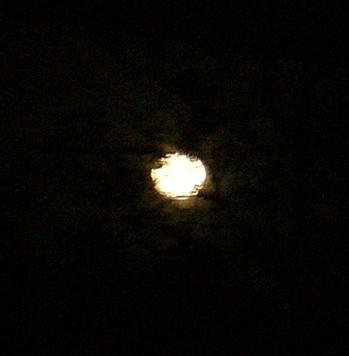この夜の月