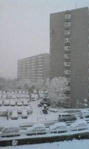 元旦の積雪