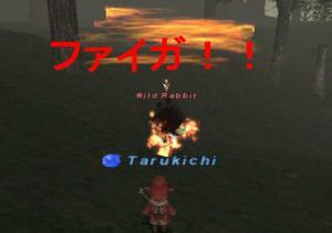 20070105231109.jpg
