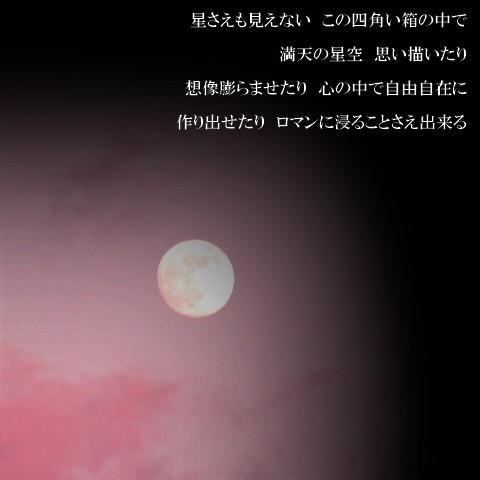 16l.jpg