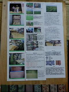 20080804175119.jpg