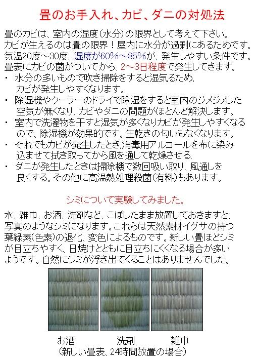 Image200890602.jpg