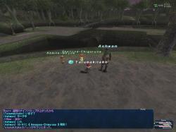 2006_02_25_17_26_08.jpg