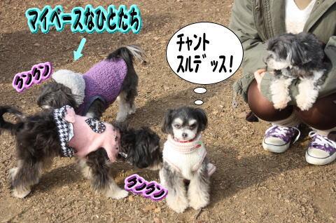 0104-10_20100103235931.jpg