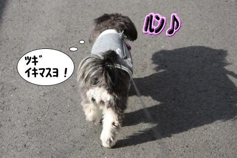 0120-3_20100120191647.jpg