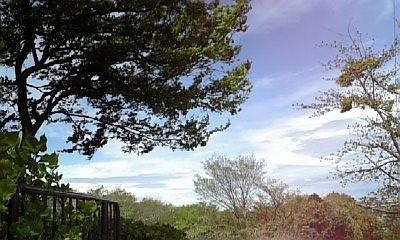080419_神ノ木公園