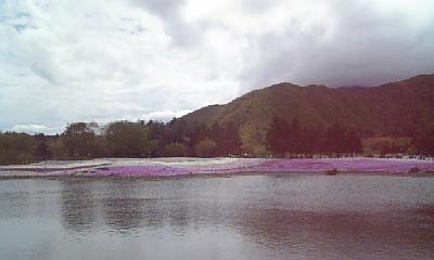 080513_富士山芝桜と竜神池