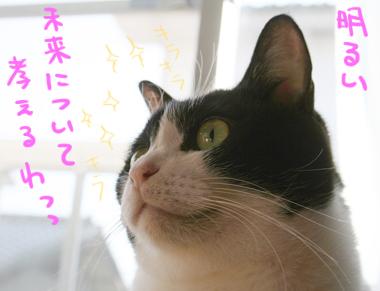 2008020108.jpg