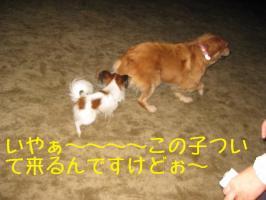 IMG_3744(1)