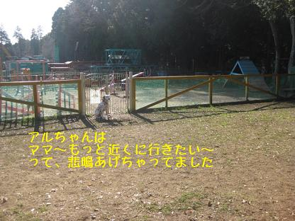 IMG_4790-65.jpg