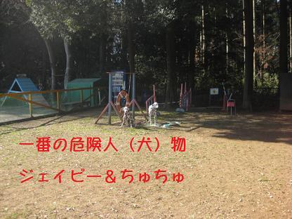 IMG_4791-65.jpg