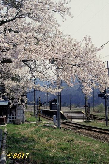 w富山地鉄横江駅 Z144P-4