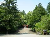 霧島神宮(参道2)