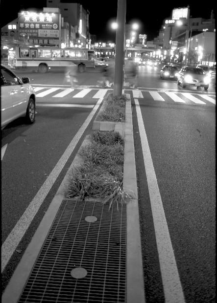 20051130.jpg