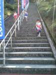 20071117石段3