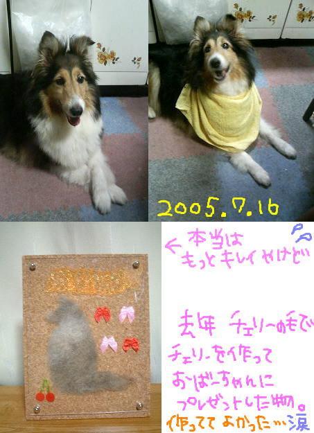 20050102.jpg