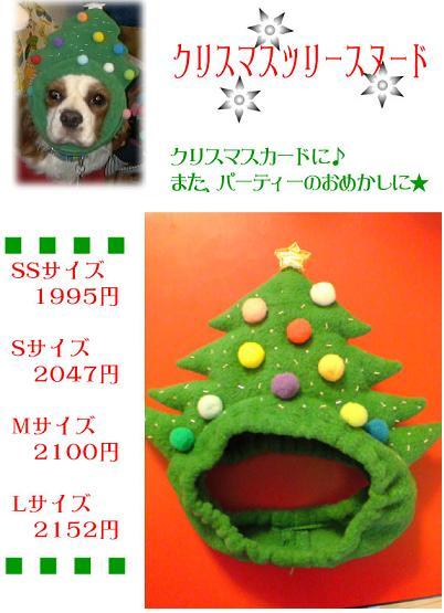 クリスマスツリーだよ~