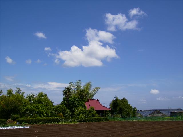 青空の雲14
