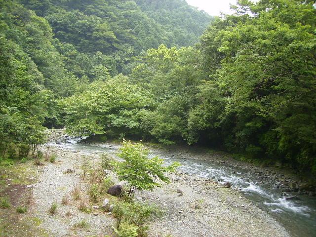 上流の河原117