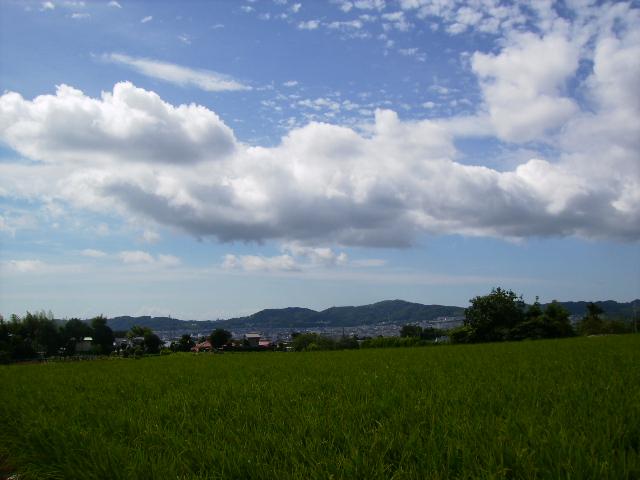 夏の雲11