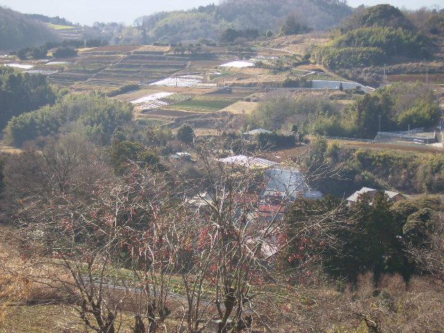 丘の畑を望む177