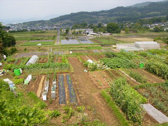 田原盆地120