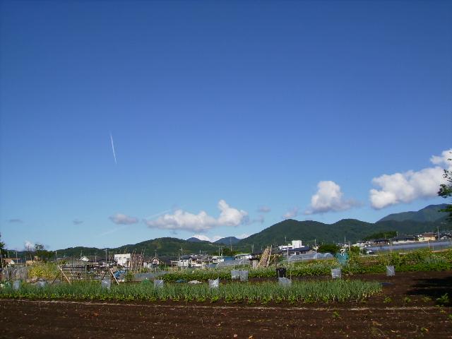初夏の青空23