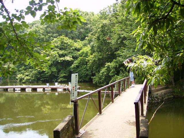 橋の釣り人96
