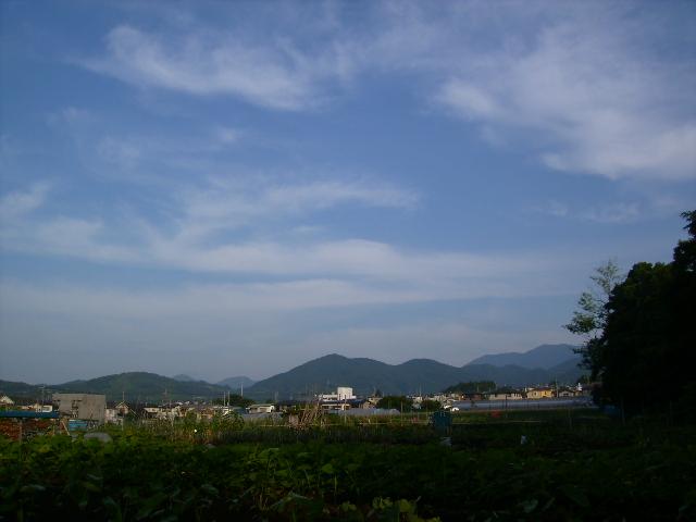 朝の青空121