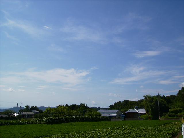 夏の青空72