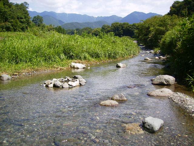 夏の川133
