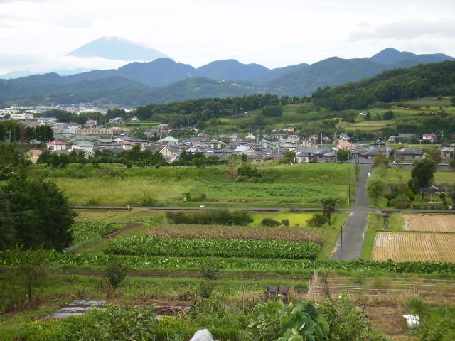 田原盆地と富士53