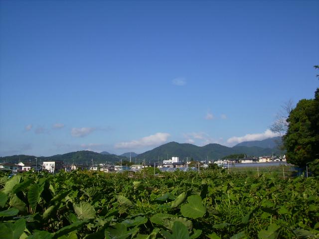 初秋の青空05