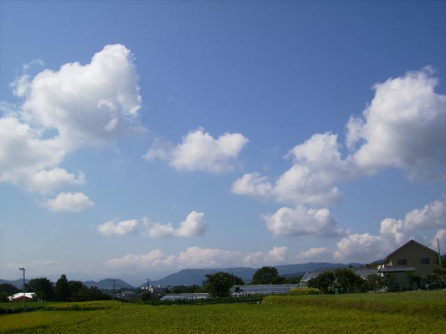 秋の雲115