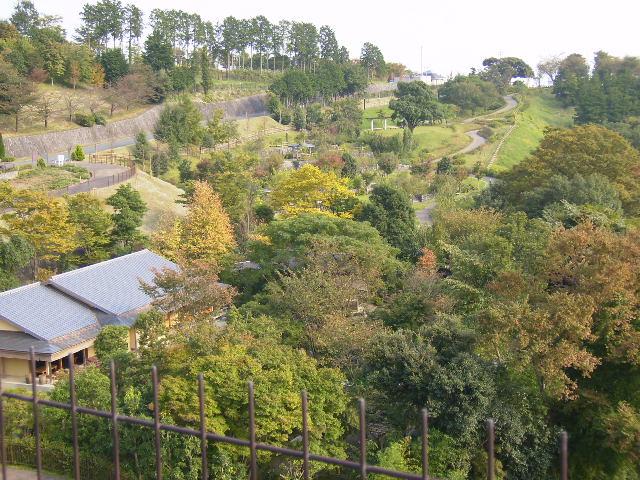 日本庭園を望む69