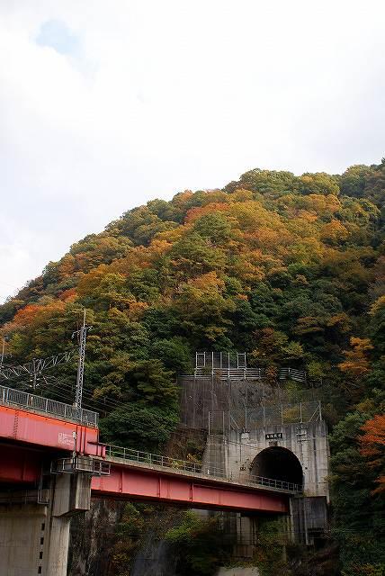 秋も終わりかな