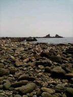 岬20080507115902