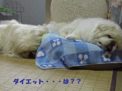 081011寝る5